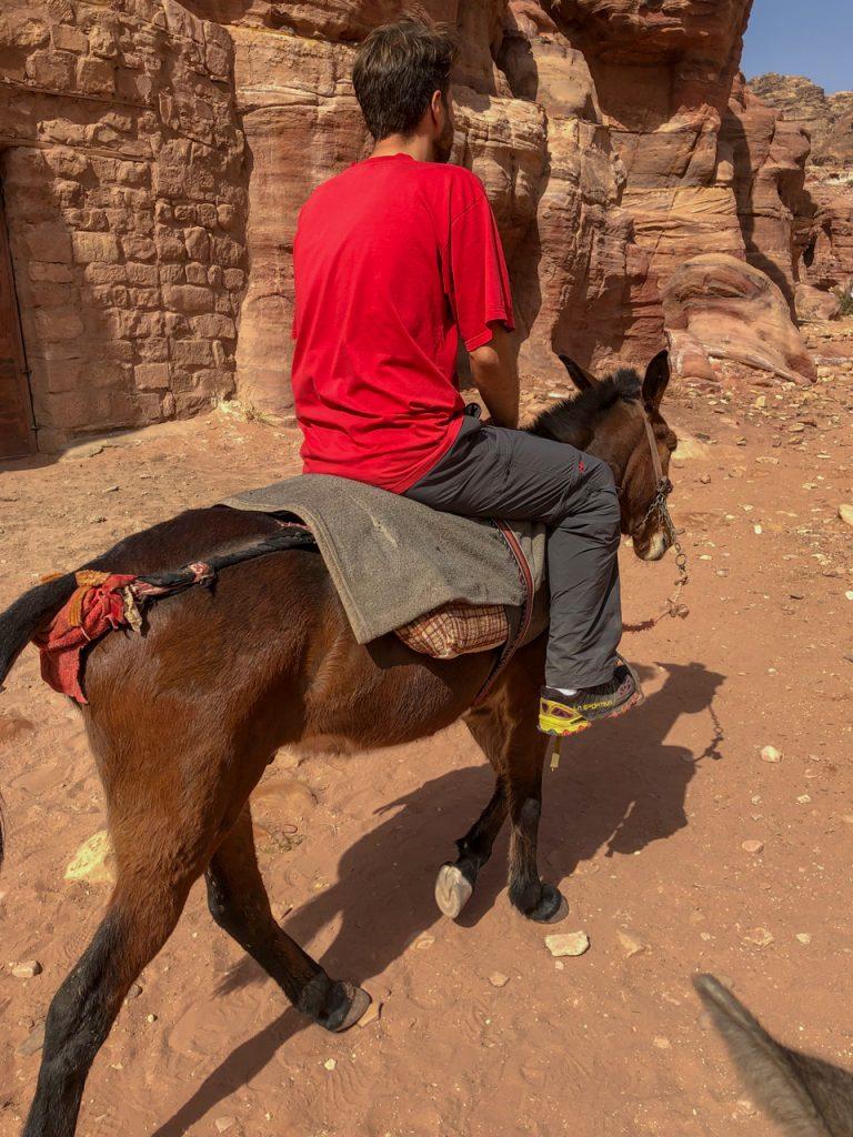 Zu geschafft von den Wegen on Petra